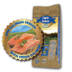 salmon_products