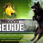 Prodog_REVIVE_V2[3515]-page-001